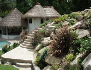 Caribbean Botanical Designs - Living Landscapes